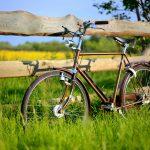オランダのビール会社発、自転車で運びやすいパッケージのビール