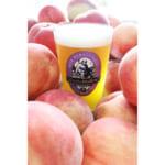サンクトガーレン、トロリとした口あたりの「7種の桃のエール」を発売。10月中旬からビアバーへ出荷予定