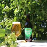 サンクトガーレン、かいこがねホップ使用ビール「FRESH HOP IPA」発売