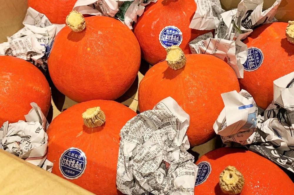 打木赤皮甘栗かぼちゃ
